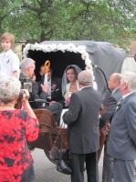 dojatí svadobčania