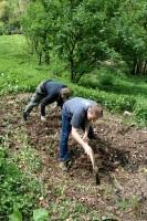 Jožko sa rozhodol, že si na chajde urobí záhradku.